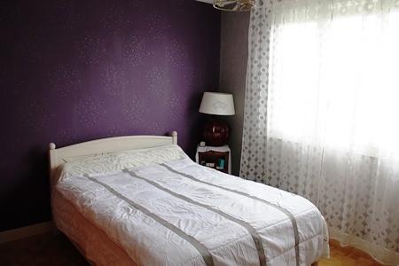 room_double_guesthouse_b&b_24_du_le_mans_race