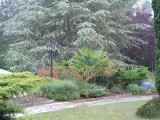 jardin-B&B-le-mans